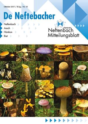 Titelbild Oktober Ausgabe Pilze