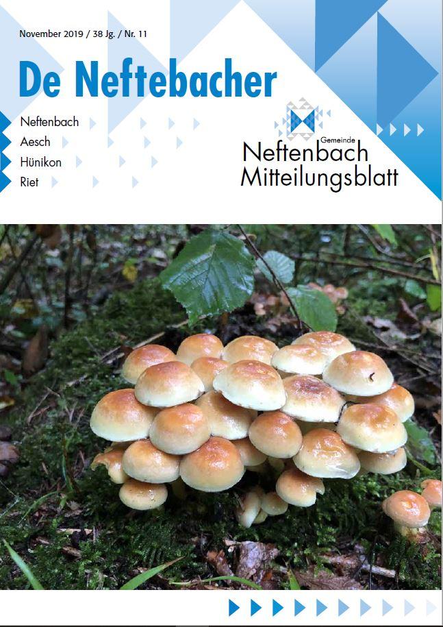 Titelblatt Mitteilungsblatt November 2019